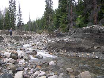 Debris flows are a hazard in the South Chilcotin Mountains. This event completely blocked Paradise Creek temporarily and left deposits up to 3m deep.