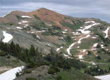 Eastern section of Harris Ridge