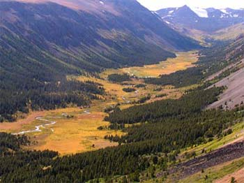 U shaped Tosh Creek valley in autumn