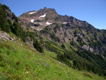 Meadows below Baby Munday Peak. The Still above (W face)