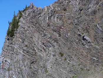 Limestone bedding and folding near Mt. McGuire
